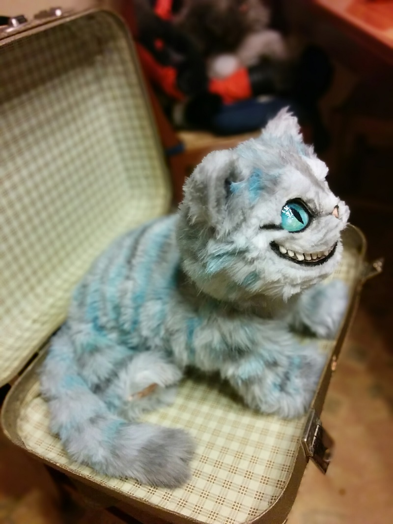 poinsettia poison cat