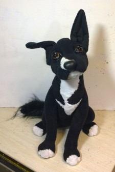 Realistic stuffed dogs: Lucky You send us image we make a custom soft toy for you!
